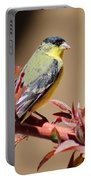 Goldfinch On Branch 031015aa Portable Battery Charger