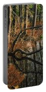 Goose Lake Twilight Portable Battery Charger