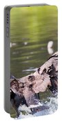 Goose Landing II Portable Battery Charger