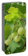 Gooseberries Portable Battery Charger