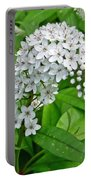 Gooseneck Flower Portable Battery Charger by Aimee L Maher Photography and Art Visit ALMGallerydotcom