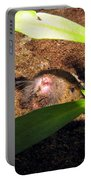 Gopher In Moms Garden Portable Battery Charger