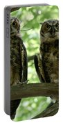 Gorgeous Great Horned Owls Portable Battery Charger