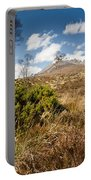 Gorse Bush On Mountain Approach Portable Battery Charger