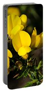 Gorse Portable Battery Charger