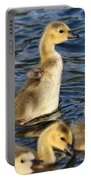 Gosling Showoff Portable Battery Charger