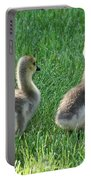 Goslings Portable Battery Charger