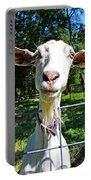 Got Your Goat Portable Battery Charger