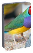 Gouldian Finch Portable Battery Charger