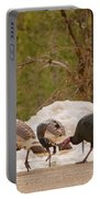Gould's Wild Turkey V Portable Battery Charger