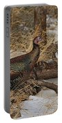Gould's Wild Turkey Xiii Portable Battery Charger
