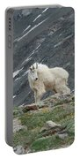 Gq Mtn. Goat Portable Battery Charger