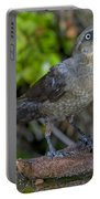 Grackle Hen Portable Battery Charger