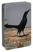 Grackle Posturing Portable Battery Charger
