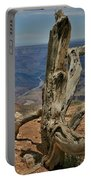Grand Canyon And Dead Tree 2  Portable Battery Charger