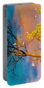 Grand Reflections # 1 Portable Battery Charger
