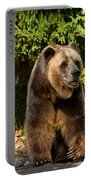 Grandpa Bear Portable Battery Charger