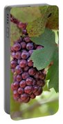 Grape Bunch Portable Battery Charger
