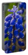 Grape Hyacinth Portable Battery Charger by Adam Romanowicz