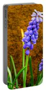 Grape Hyacinth And Sandstone  Portable Battery Charger
