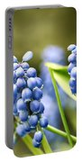 Grape Hyacinths Portable Battery Charger