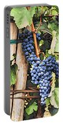 Grapes 1 Portable Battery Charger