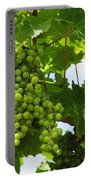Grapes In A Vineyard Portable Battery Charger