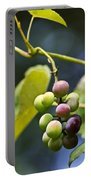 Grapes On The Vine Portable Battery Charger