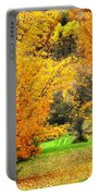 Grassy Autumn Road Portable Battery Charger