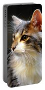 Gray And White Cat Portable Battery Charger