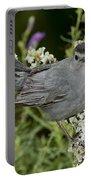 Gray Catbird Portable Battery Charger
