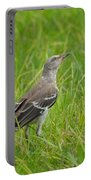 Gray-eyed Catbird II Portable Battery Charger
