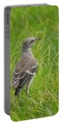 Gray-eyed Catbird Portable Battery Charger