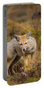 Zorro Portable Battery Charger