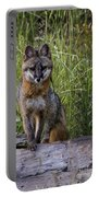 Gray Fox Posing Portable Battery Charger