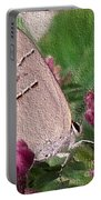 Gray Hairstreak Butterfly Portable Battery Charger