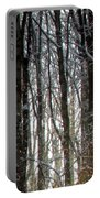 Gray Winter Grove Portable Battery Charger