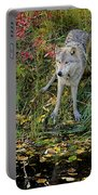 Gray Wolf Drinking Portable Battery Charger