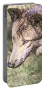 Gray Wolf Grey Wolf Canis Lupus Portable Battery Charger