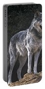 Gray Wolf On Hillside Endangered Species Wildlife Rescue Portable Battery Charger