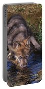 Gray Wolf Pup Endangered Species Wildlife Rescue Portable Battery Charger