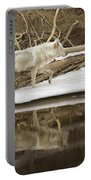Gray Wolf Reflection Portable Battery Charger