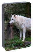 Gray Wolf White Morph Portable Battery Charger