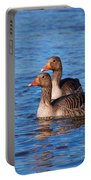 Graylag Goose Portable Battery Charger