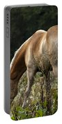 Grazing Days Portable Battery Charger