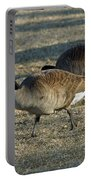 Grazing Geese Portable Battery Charger
