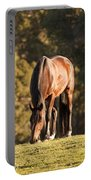 Grazing Horse At Sunset Portable Battery Charger
