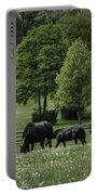 Grazing Horses Portable Battery Charger