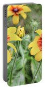 Great Blanket Flower Gaillardia Portable Battery Charger