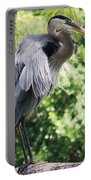 Great Blue Heron IIi Portable Battery Charger